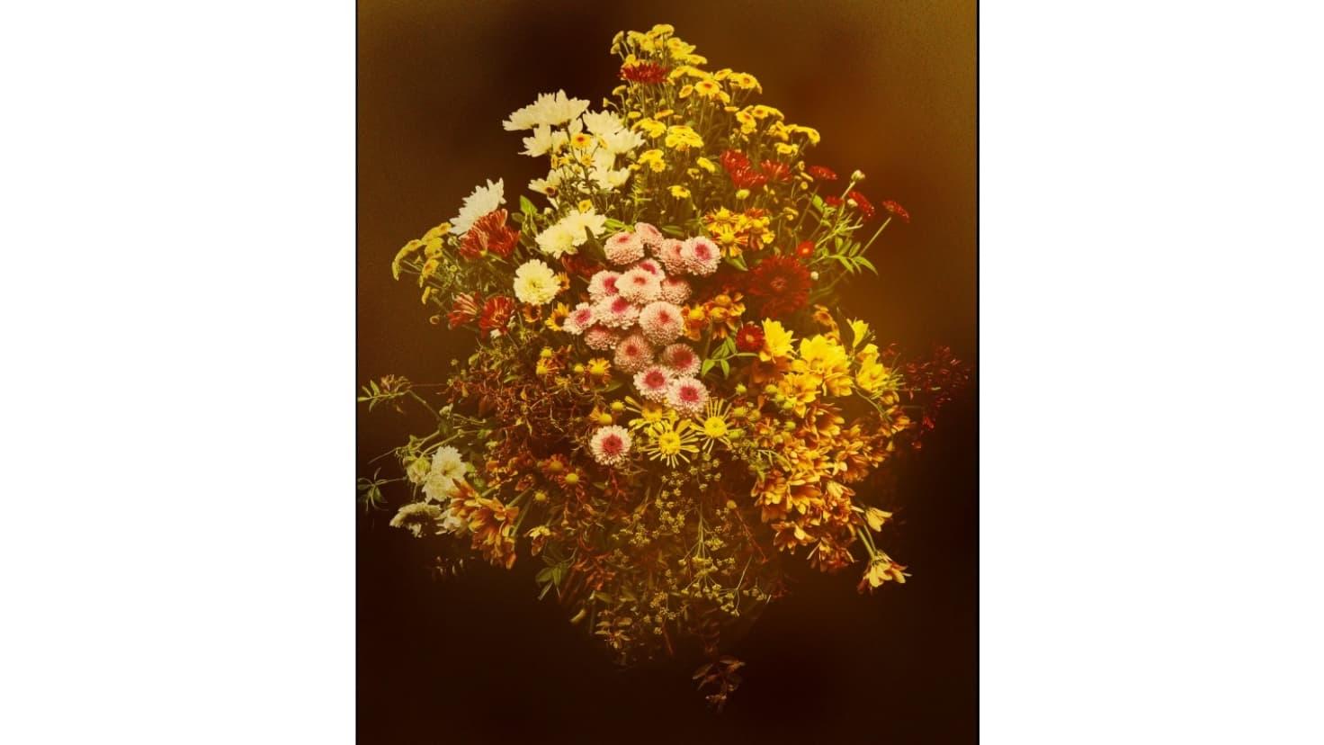フラワーアーティスト・東信が「名画の時間」を表現。儚い花々の生命を ...